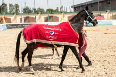 Звезда Туркестана 2018, Согдиана- шер чемпионка породы